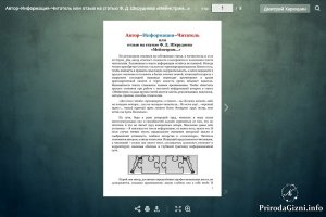 Автор–Информация–Читатель или отзыв на статью Ф. Д. Шкруднева «Мейнстрим…»