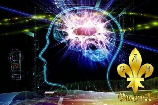Мозг всему голова!